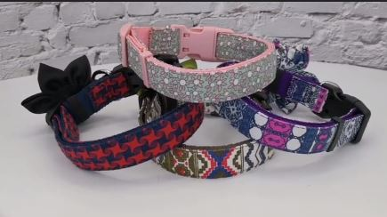 Cute Dog Collar Adjustable